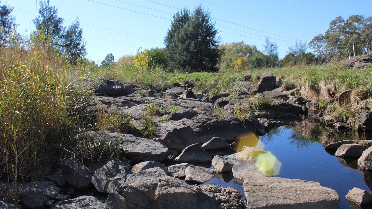 Ginninderra Creek in Canberra is being restored