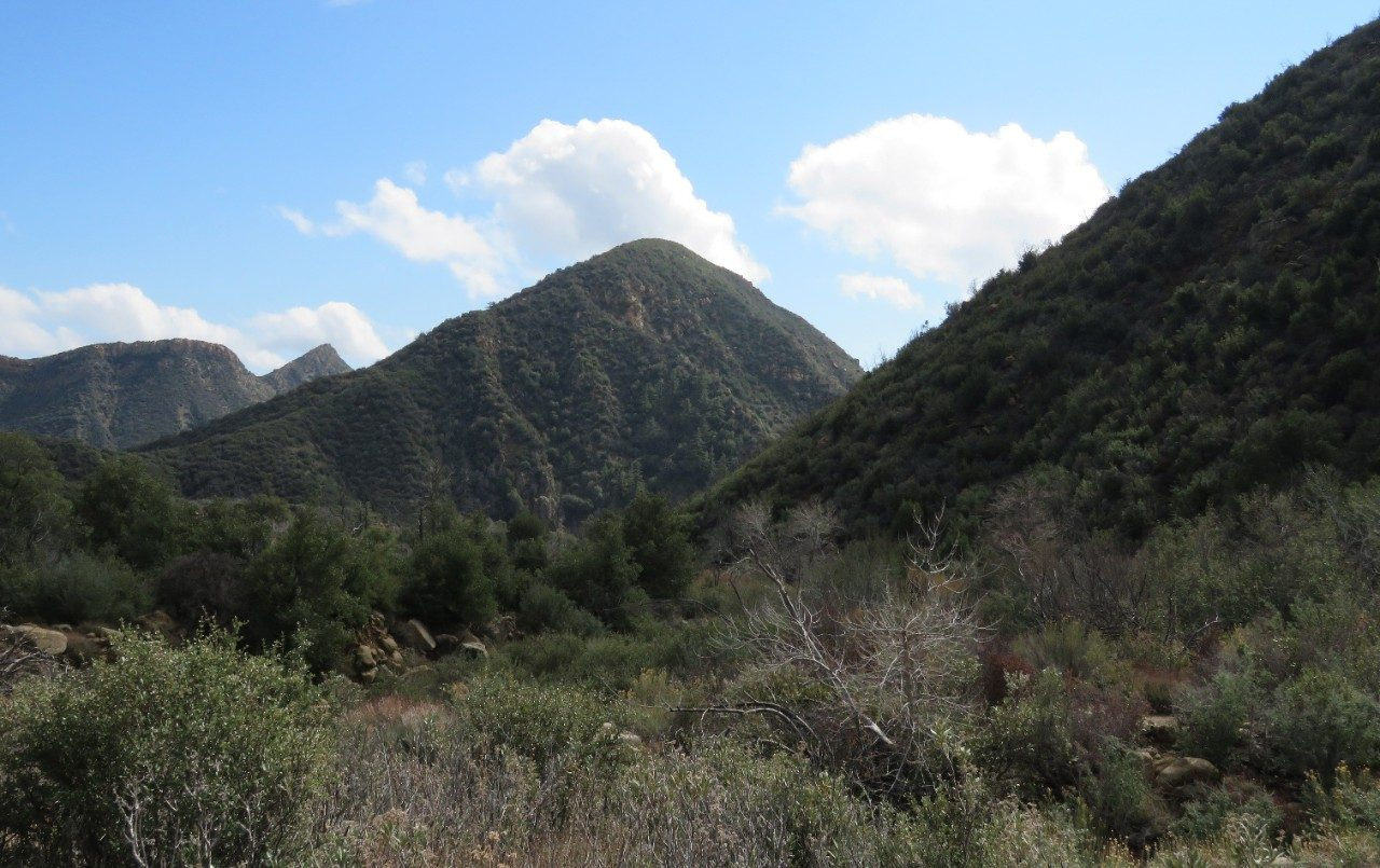 Potrero Canyon